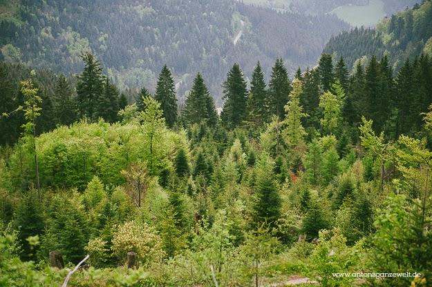 ausflug nordschwarzwald mummelsee antons ganze welt9. Black Bedroom Furniture Sets. Home Design Ideas