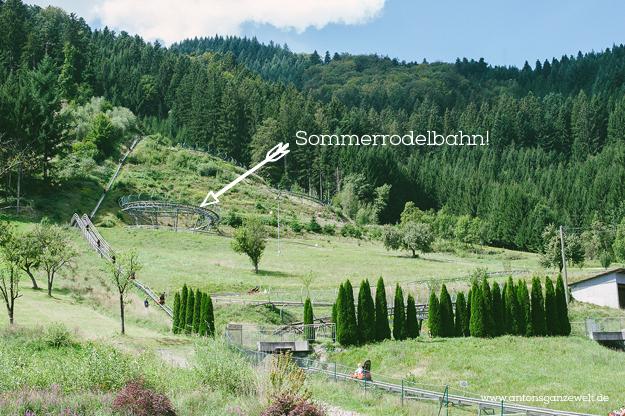 Gutach im Schwarzwald Sommerrodelbahn Vogstbauernhöfe Antons ganze Welt