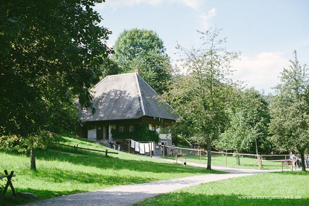Gutach im Schwarzwald Sommerrodelbahn Vogstbauernhöfe Antons ganze Welt11