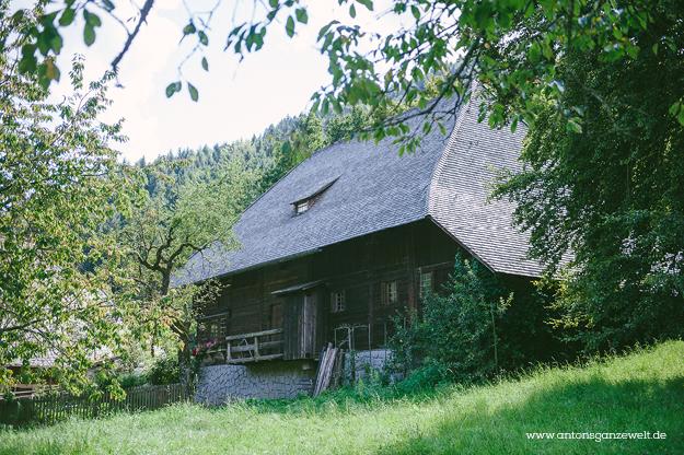 Gutach im Schwarzwald Sommerrodelbahn Vogstbauernhöfe Antons ganze Welt16