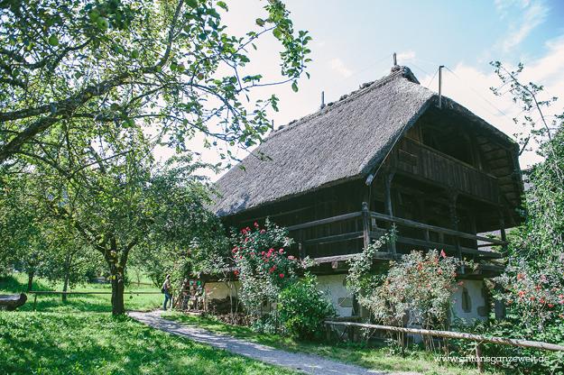 Gutach im Schwarzwald Sommerrodelbahn Vogstbauernhöfe Antons ganze Welt22