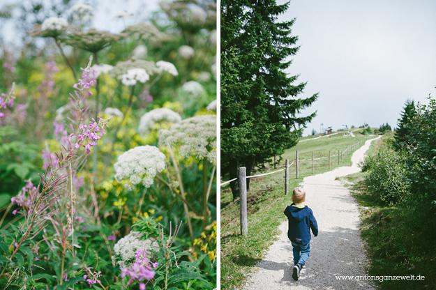 Tagestour Berchtesgardener Land mit Kindern8
