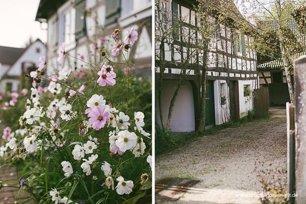 Hunspach Seebach Elsass Rundreise8