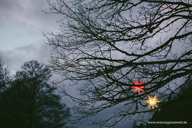 Christbaumschlagen und Weihnachtsmarkt Ravennaschlucht13