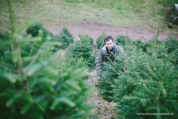 Christbaumschlagen und Weihnachtsmarkt Ravennaschlucht3