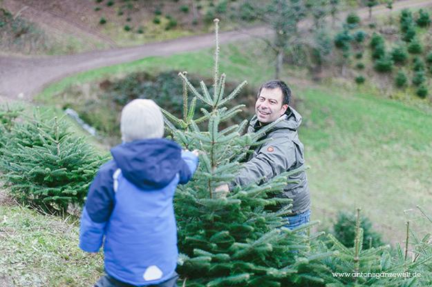 Christbaumschlagen und Weihnachtsmarkt Ravennaschlucht4