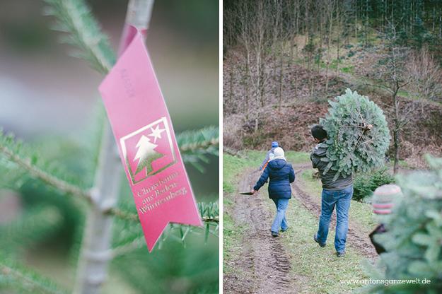 Christbaumschlagen und Weihnachtsmarkt Ravennaschlucht5