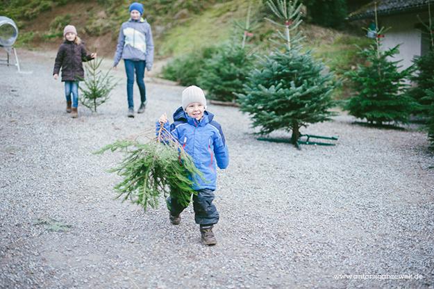 Christbaumschlagen und Weihnachtsmarkt Ravennaschlucht6