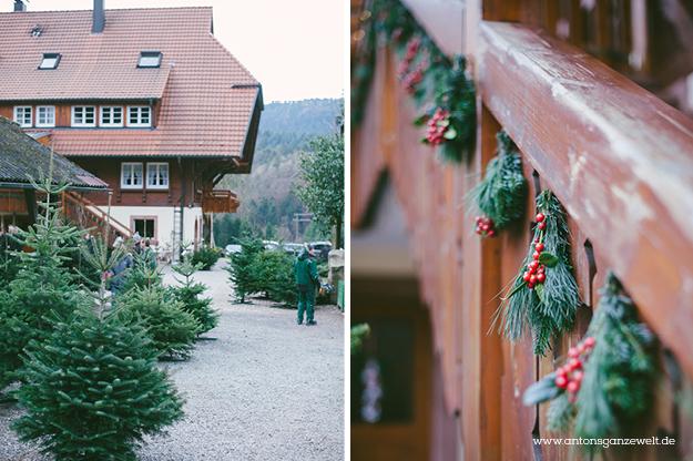 Christbaumschlagen und Weihnachtsmarkt Ravennaschlucht7