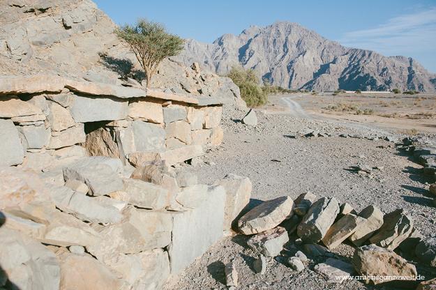 Mountain Safari Musandam4