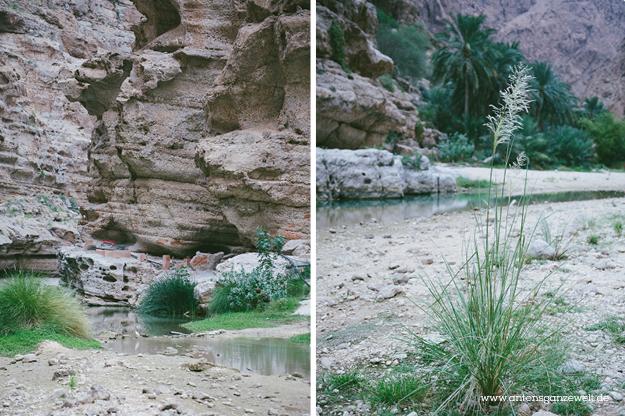Oman Wadi Shab6
