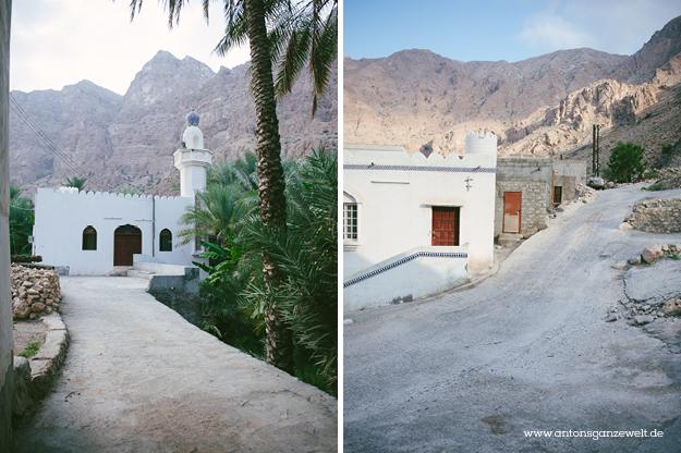 Oman Wadi Tiwi12
