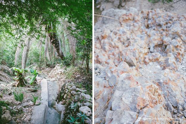 Oman Wadi Tiwi15