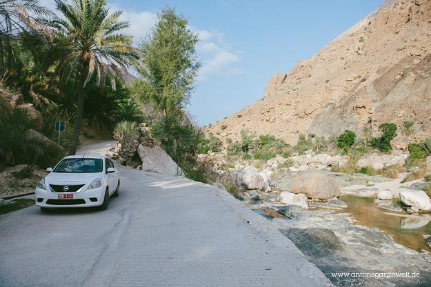 Oman Wadi Tiwi5