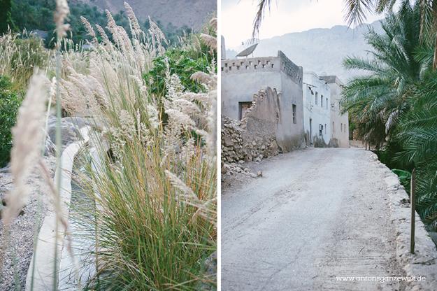 Oman Wadi Tiwi6
