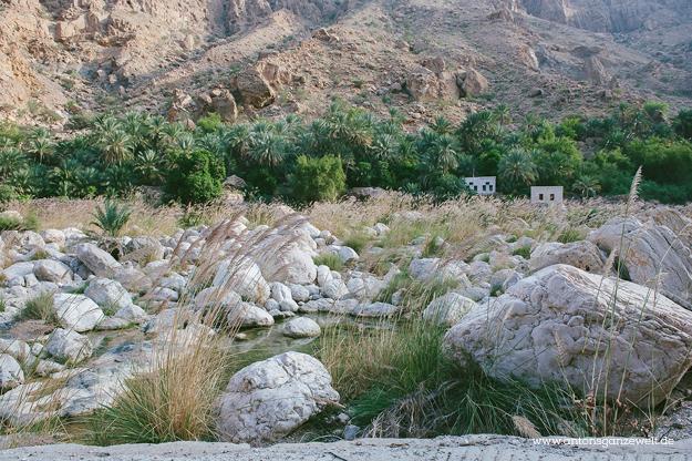 Oman Wadi Tiwi8