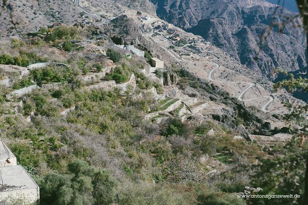 Saiq Plateau Oman16