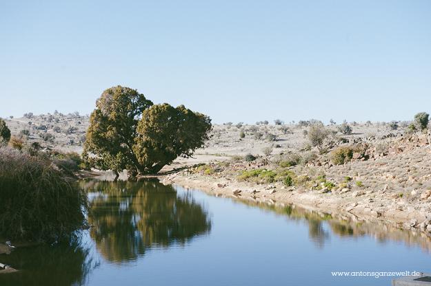 Saiq Plateau Oman18