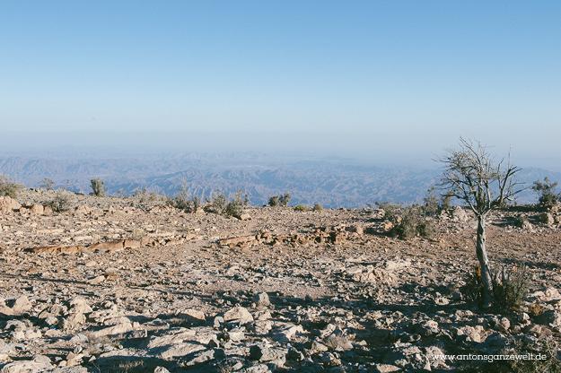 Saiq Plateau Oman20