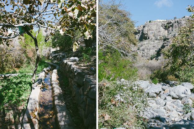 Saiq Plateau Oman9