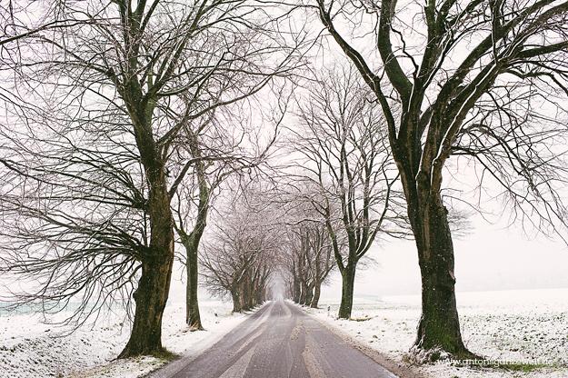 Binz auf Rügen im Winter
