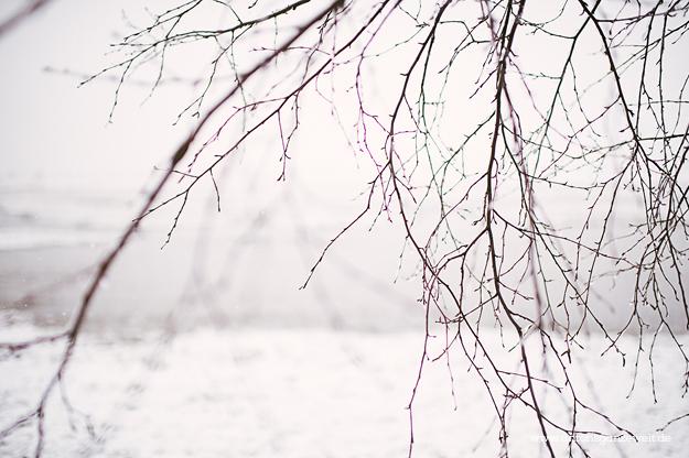 Binz auf Rügen im Winter 3
