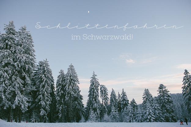 Schlittenfahren im Schwarzwaldf