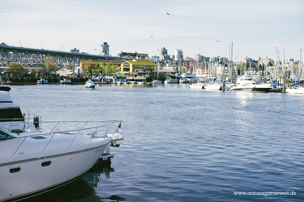 Discover Vancouvers English Bay by bike10