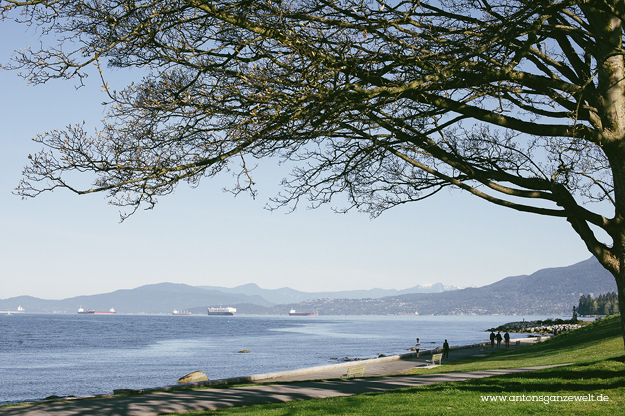 Discover Vancouvers English Bay by bike9