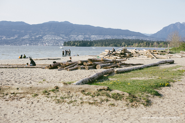 Discover Vancouvers Kitsilano by bike5