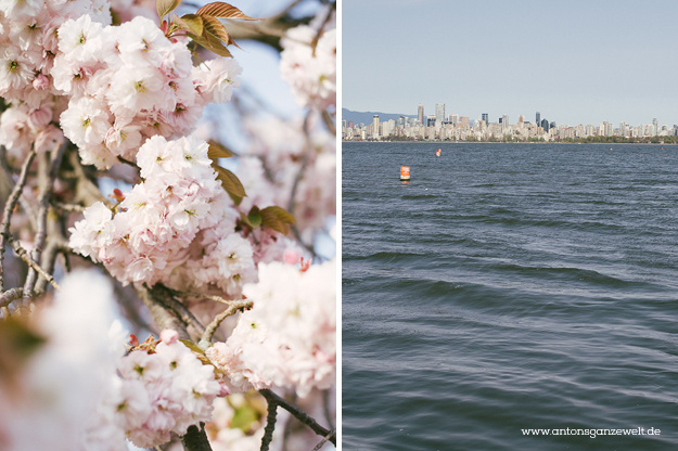Discover Vancouvers Kitsilano by bike8