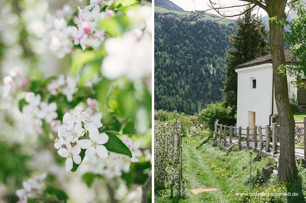 Von Meran nach Cortina d'Ampezzo Grosse Dolomitenstrasse2