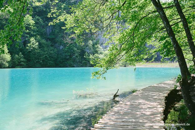 Plitvicer Seen in Kroatien mit Kindern7