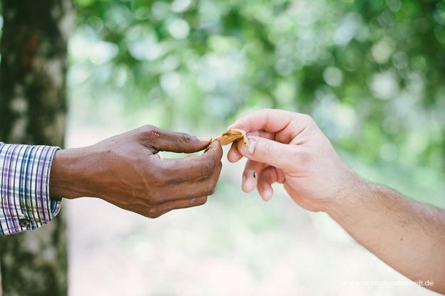 Sansisbar Besuch einer Spicefarm mit Gewürzen18