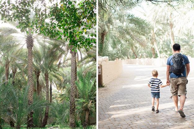 Wüste und Oasen in Abu Dhabi mit Kindern entdecken17