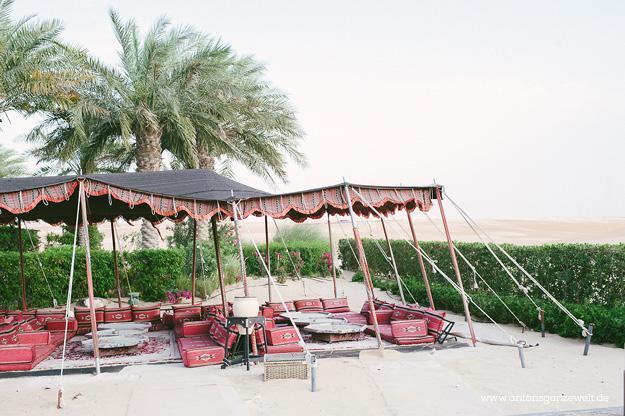 Wüste und Oasen in Abu Dhabi mit Kindern entdecken2