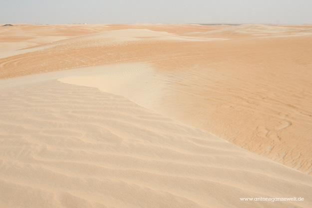 Wüste und Oasen in Abu Dhabi mit Kindern entdecken3