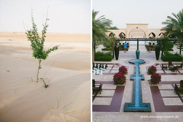 Wüste und Oasen in Abu Dhabi mit Kindern entdecken4