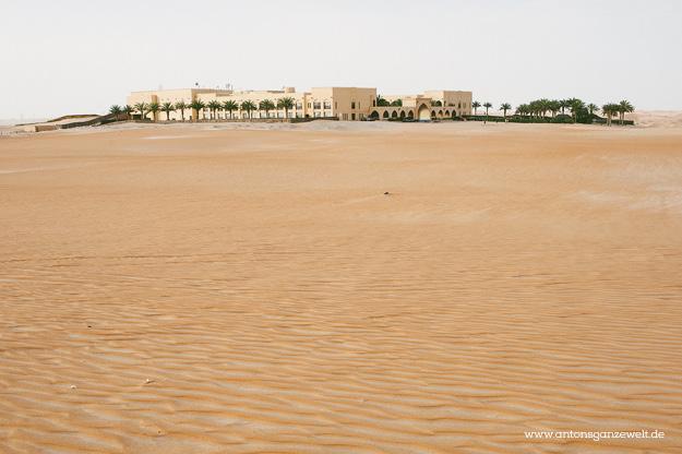 Wüste und Oasen in Abu Dhabi mit Kindern entdecken8