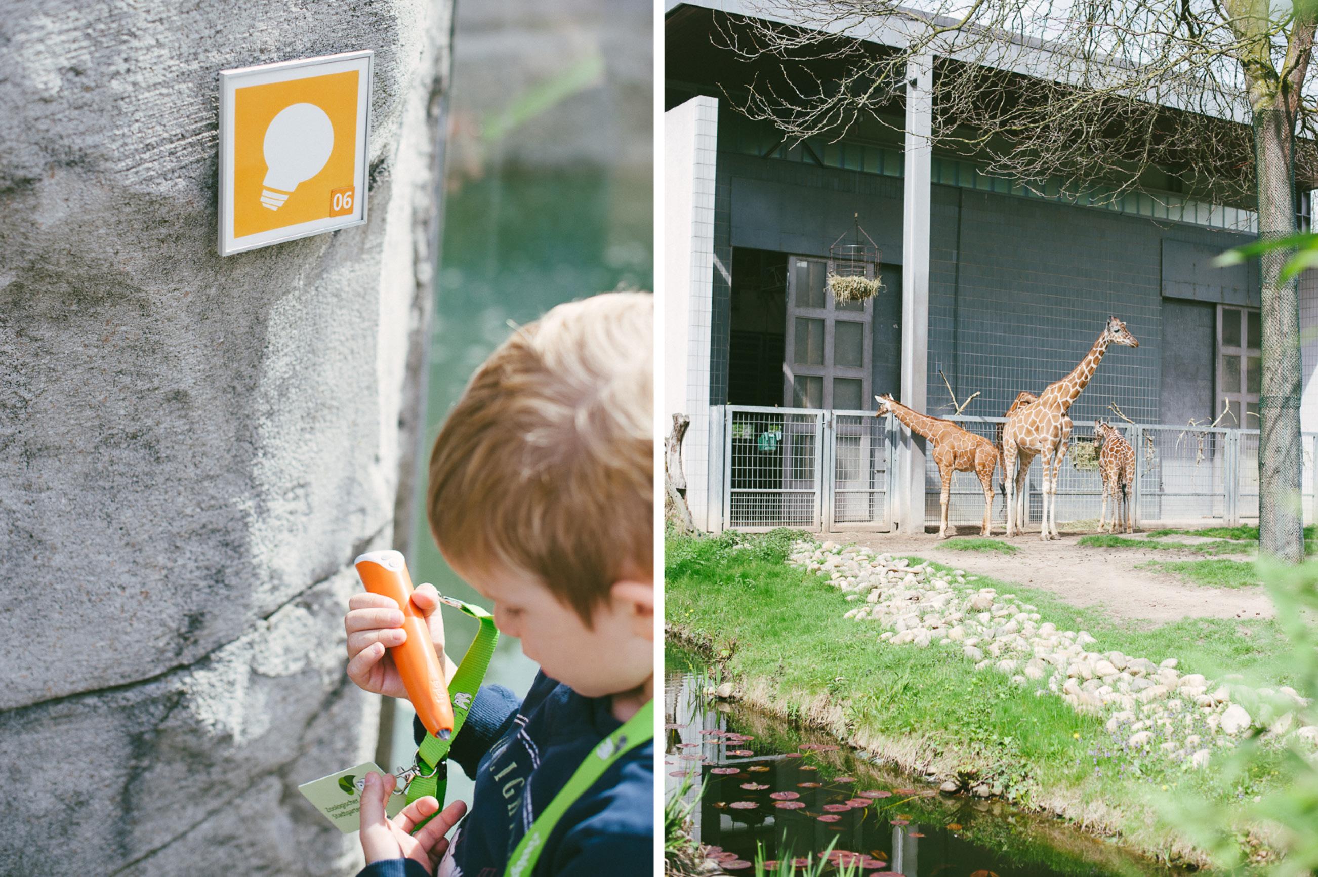 Tiptoi Rally im Zoo Karlsruhe5