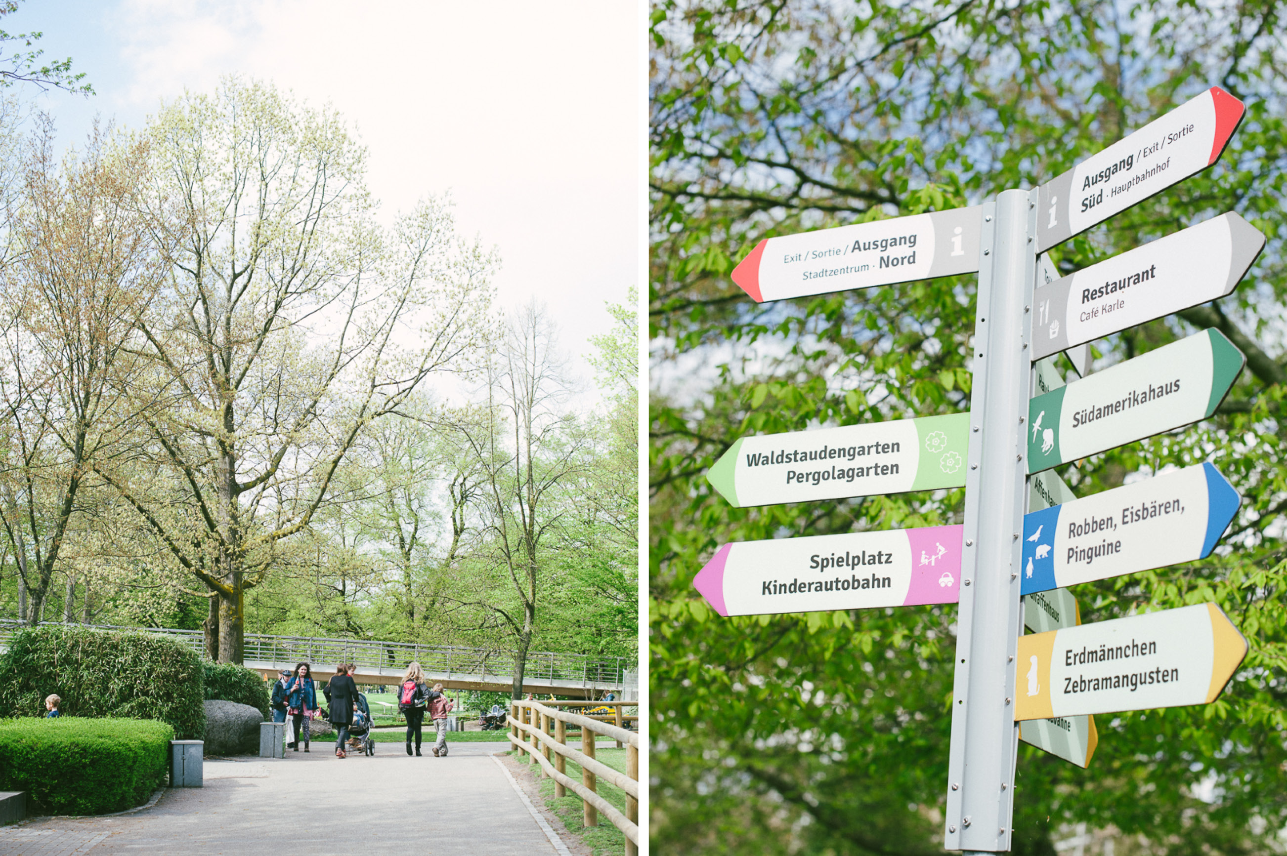 Tiptoi Rally im Zoo Karlsruhe8