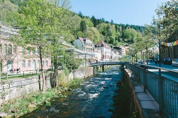 Erfahrung Baumwipfelpfad Bad Wildbad3
