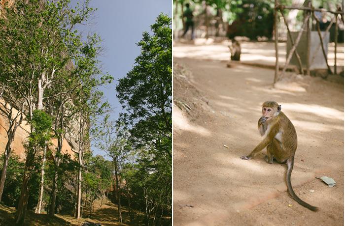 Abstieg Sigiriya Sri Lanka Bild Reiseblog Antonsganzewelt Kinder3