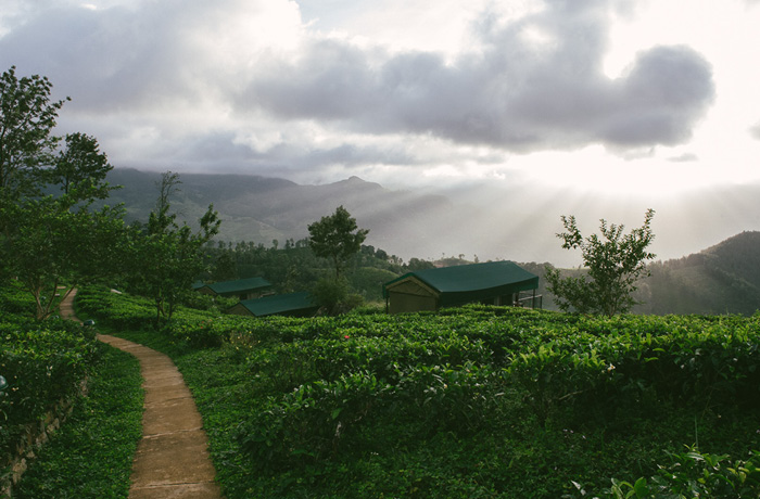 Madukele Tea Eco Lodge Erfahrung Sri Lanka Hotel13