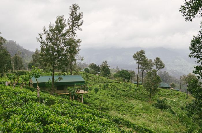 Madukele Tea Eco Lodge Erfahrung Sri Lanka Hotel2