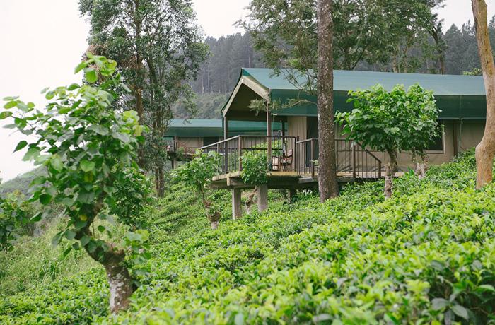 Madukele Tea Eco Lodge Erfahrung Sri Lanka Hotel6