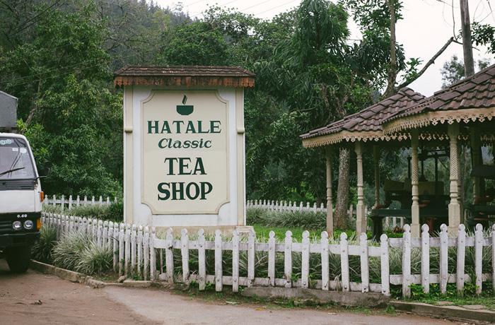 Sri Lanka Teeplantagen Hochland Reiseblog mit Kindern10
