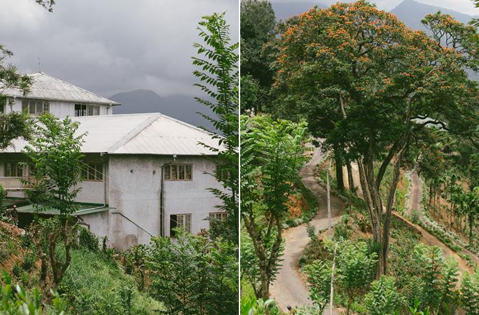 Sri Lanka Teeplantagen Hochland Reiseblog mit Kindern12
