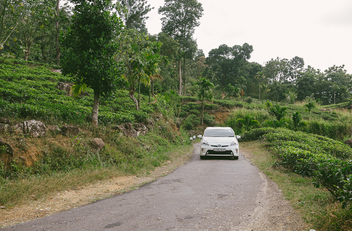 Sri Lanka Teeplantagen Hochland Reiseblog mit Kindern4