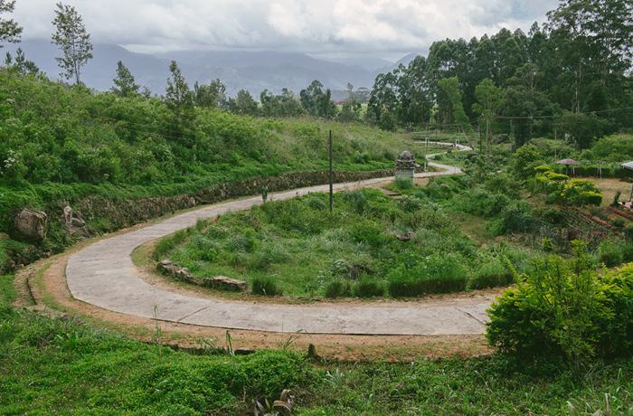 Sri Lanka Teeplantagen Hochland Reiseblog mit Kindern7